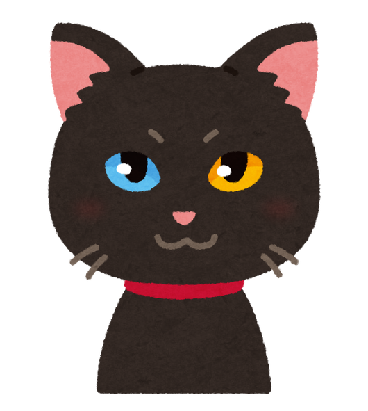 pet_cat_oddeye_black