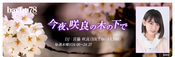 sakura_top1704