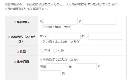 ヤスアキマイク入力フォーム (2)