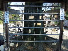鷲宮神社絵馬回収後3