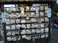 鷲宮神社絵馬20110104戌