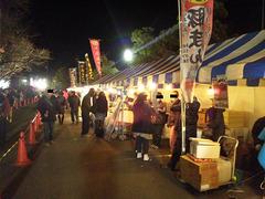 2011正月鷲宮神社屋台1