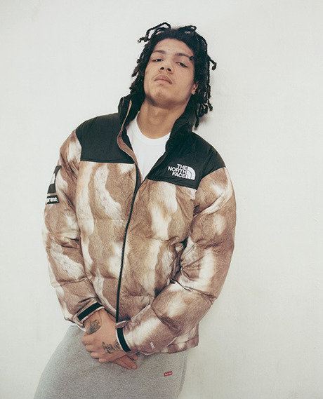 Supreme has joined with The North Face to introduce the Nuptse Jacket and Nuptse Vest.