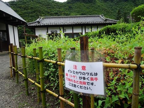 イシミカワ注意DSC03194