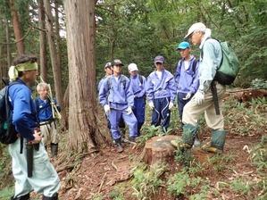 職場体験_森林整備