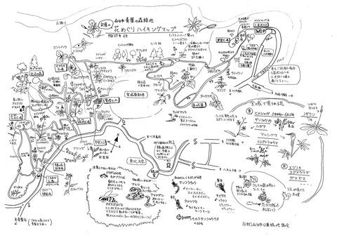 青葉の森初夏の花めぐりハイキングマップ