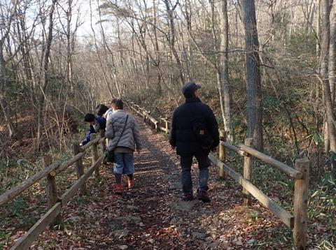 ☆6森を歩く (5)
