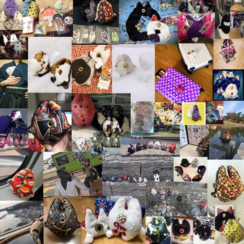 デメネコ写真集合-2018-23 のコピー