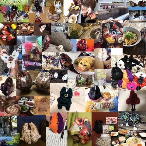 デメネコ写真集合-2018-3 のコピー