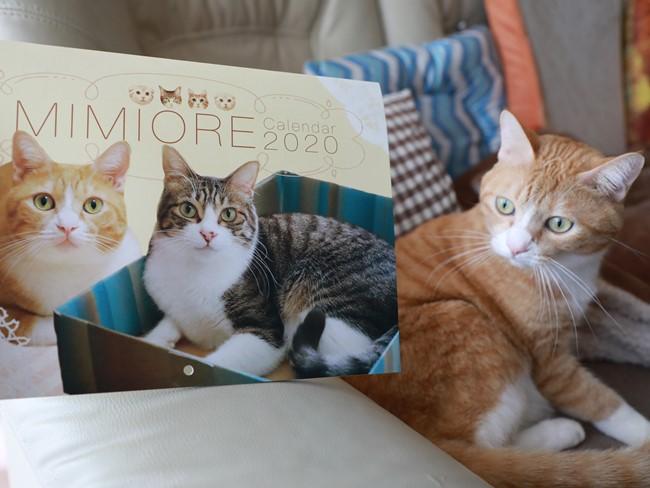 カレンダーが届きました ミミオレ