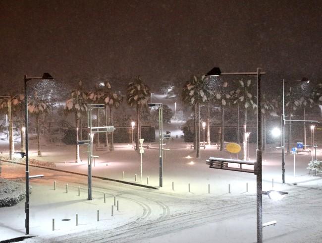 雪の浦安。