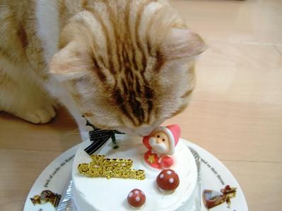 クリスマスケーキ5