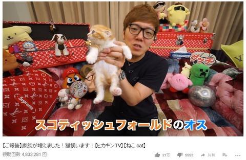 ヒカキンが金澤朋子と同じ種類の猫飼い始めてワロタwww