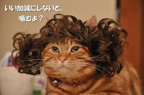 【生活】シャンプー止めてフサフサに? 五木寛之、洗髪は「2ヶ月に1回」