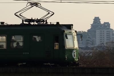 青ガエル 熊本城バック