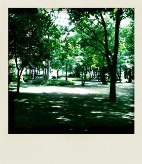 20100613散歩1