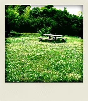 20100613散歩2