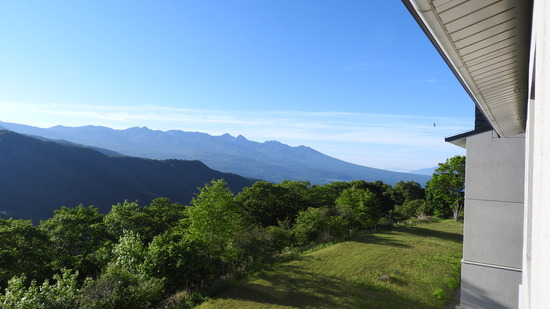 信州霧ヶ峰 車山 一面のレンゲツツジ
