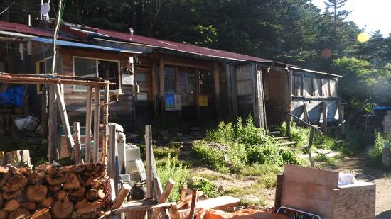 鳳凰三山�A 満開の タカネビランジ 南御室小屋から薬師岳・観音山