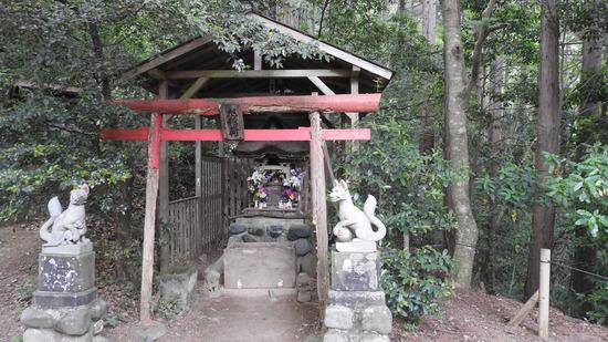 高尾山〜小仏峠〜景信山 緑と花の道