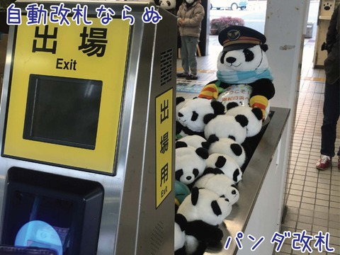 改札が有人だった時の場所にパンダのぬいぐるみが押し込められている
