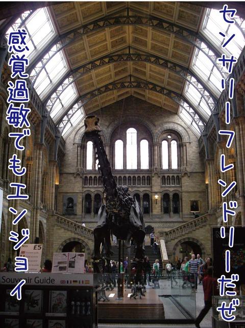 ロンドン自然史博物館内観