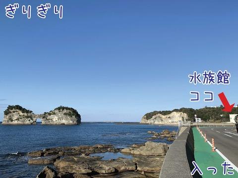 京都大学白浜水族館と円月島