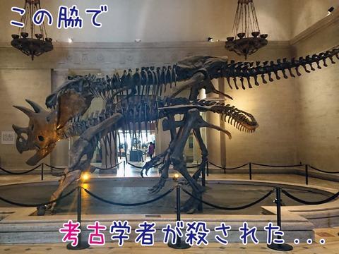 ロサンゼルス自然史博物館のティラノサウルスとトリケラトプスの展示