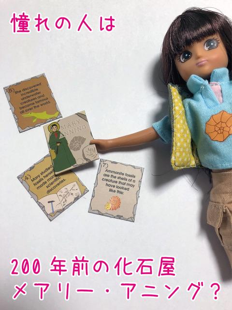 アニングコレクターズカード(テキスト入り)