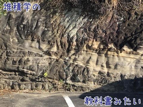 ハンモック状斜交層理が見える崖