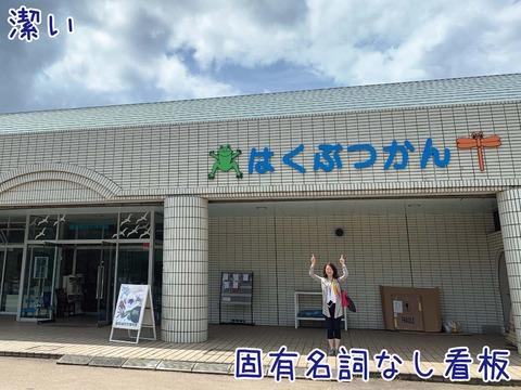 観音崎自然博物館外観