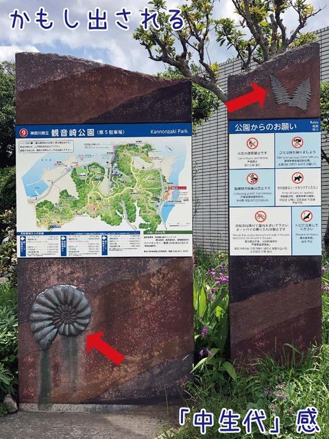 観音崎自然博物館屋外看板にアンモナイトのモチーフ