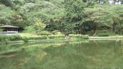 烏ヶ森公園の池