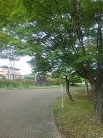 長峰公園のモミジの道(撮影日は9月10日)