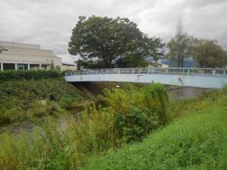 鳥の絵がある橋(撮影日は9月5日)