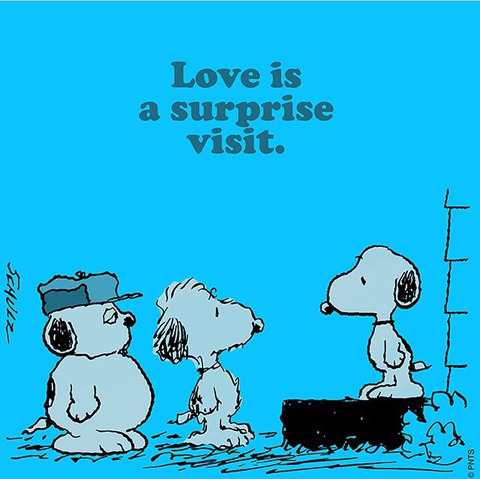 lovesurprise