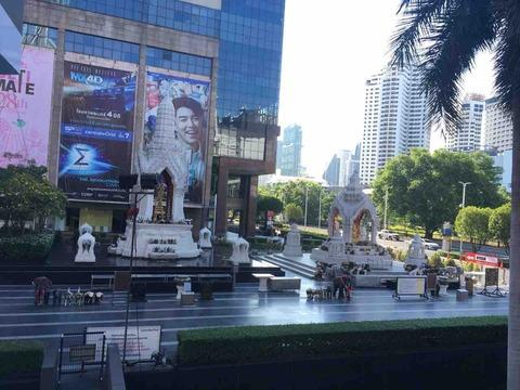 タイのすごいところ再発見 ルッコラの日常 5月12日〜18日