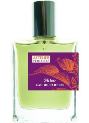 lady_perfume_19