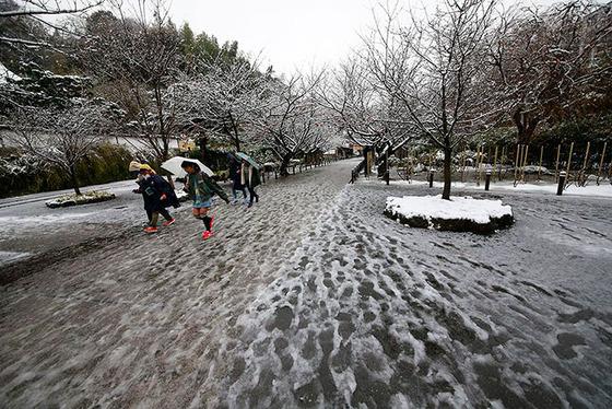 tokyo_snow_20
