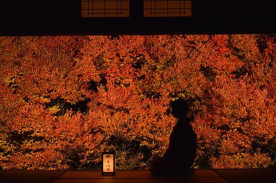 japan_autumnwindow_5