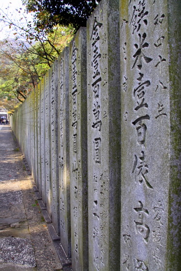 shikoku_travel_36
