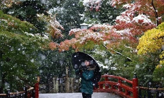 tokyo_snow_5