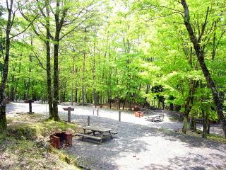 japan_campsite2