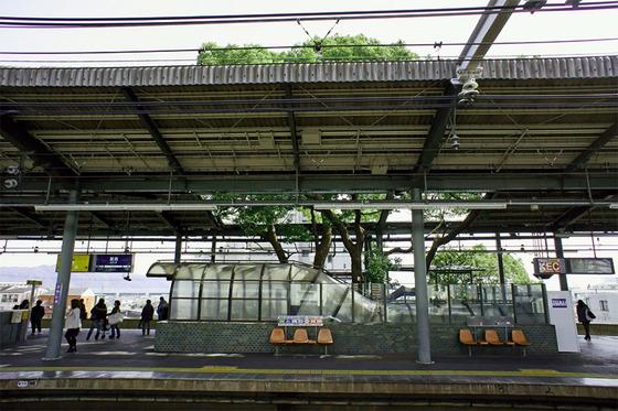 kayashima_4