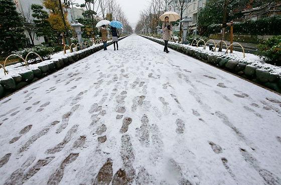 tokyo_snow_36