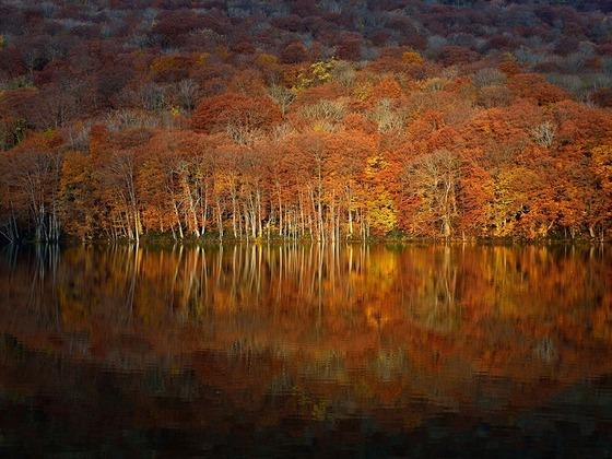 autumn_aomori