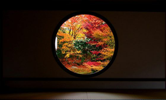 japan_autumnwindow_8