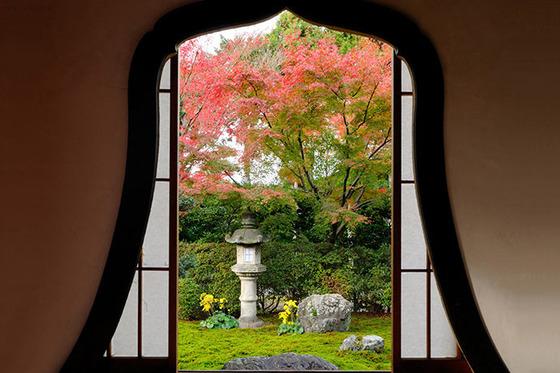 japan_autumnwindow_6