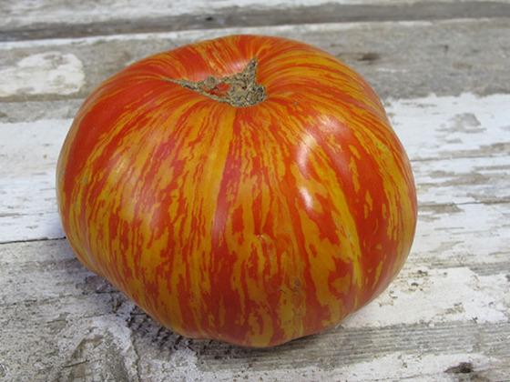 tomato_9