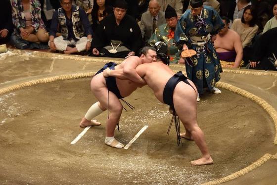 sumo_7